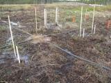 Flera stavar som sticker upp ur marken och slangar på backen. Här mäts sättningar.