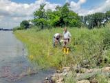Två personer som inspekterar erosionsskydd längs Rhen, Tyskland.