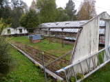 En plantskola i Värmland.